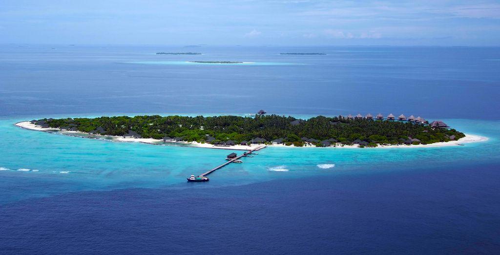 Bon séjour dans les îles !
