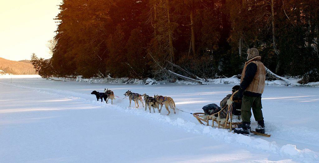 Découvrez la beauté du Canada sous la neige