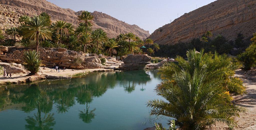 Déjeuner au coeur d'oasis verdoyantes... Vous allez en prendre plein la vue !