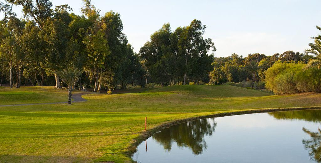 Améliorez votre swing au golf du Soleil