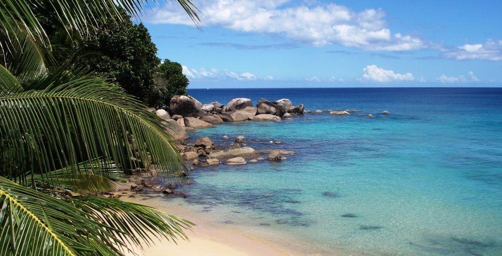 Détendez-vous, vous allez vivre un séjour paradisiaque les pieds dans l'eau