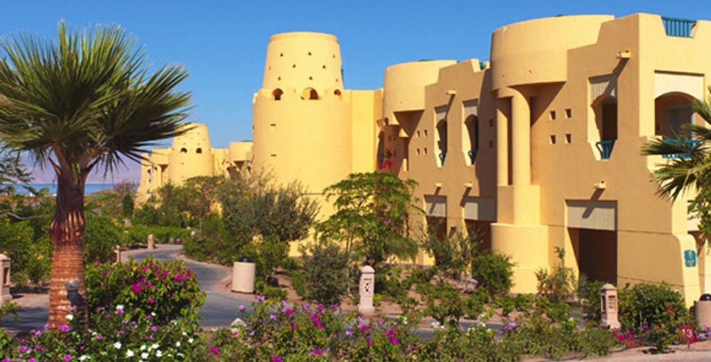 Dans un cadre verdoyant... - Marriott Beach Red Sea Resort ***** ou Marriott Beach Red Sea Resort ***** & Excursion 2 jours en Jordanie Taba