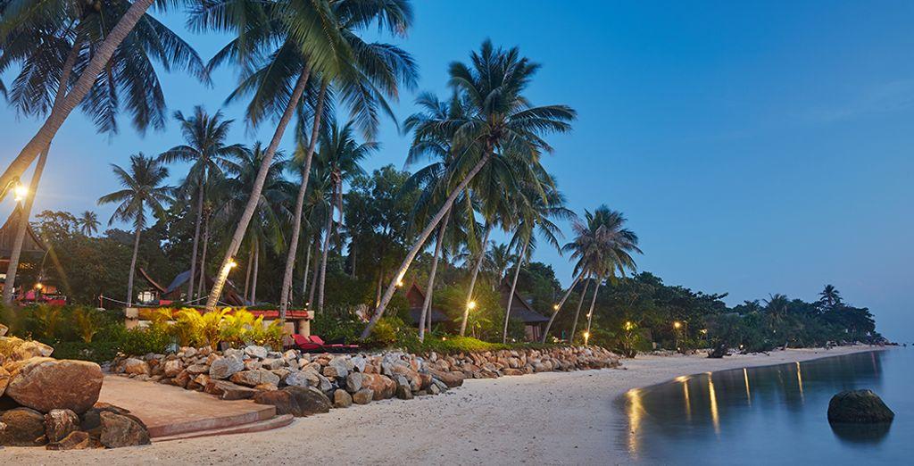 Un établissement 5* qui se situe en bordure de plage