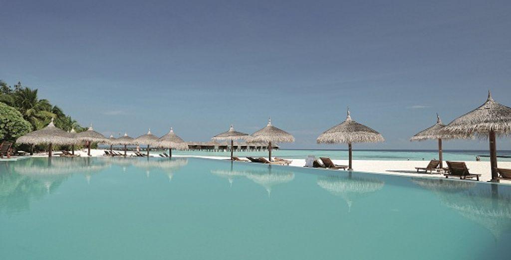 Direction les Maldives, pour un séjour magique - Maafushivaru Island Resort **** sup Malé