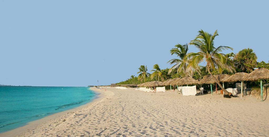 Installez-vous sur l'une des plus belles plages de l'île