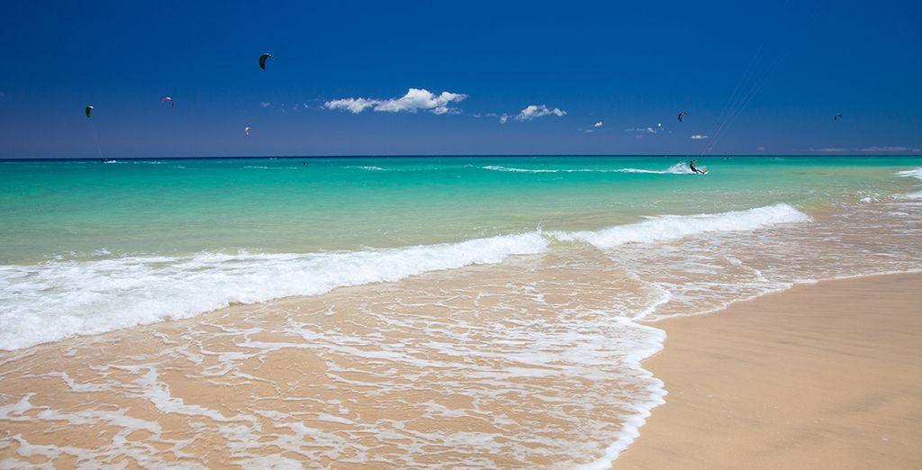 Revenez enchanté de vos vacances à Fuerteventura !