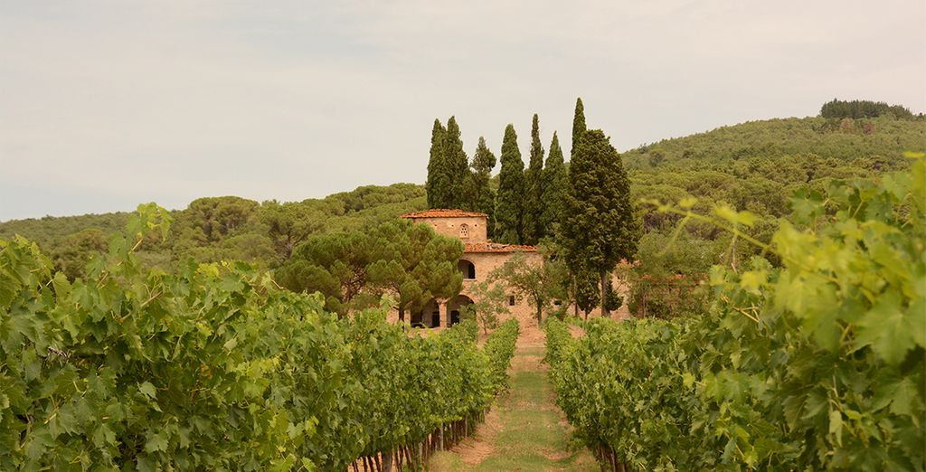 La Toscane saura vous enchanter...