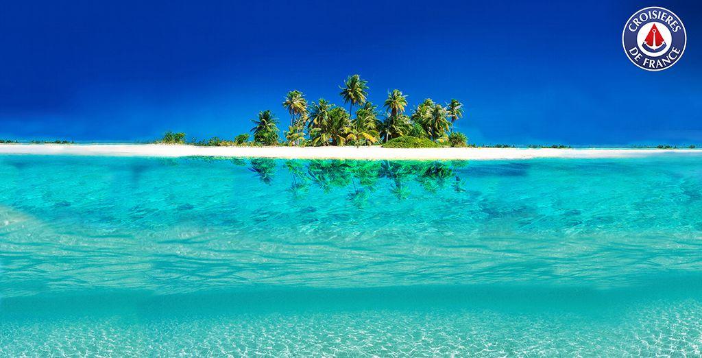 Dans les eaux chaudes des Caraïbes...