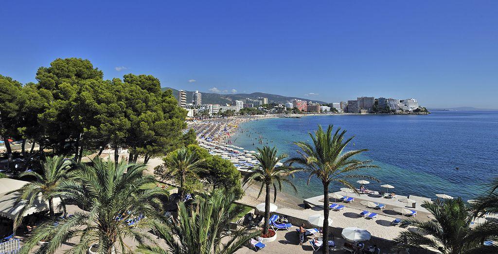 La vie est si belle à Majorque qu'il serait dommage de ne pas en profiter