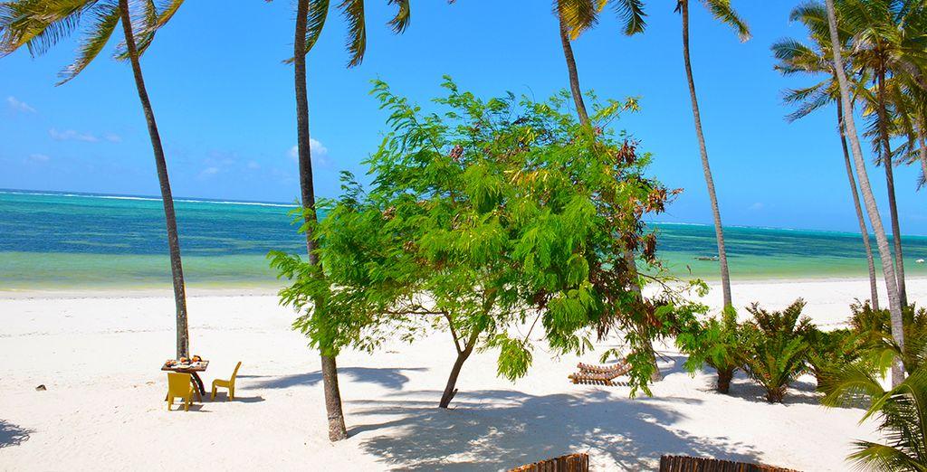 Reposez-vous sous le soleil de Zanzibar...