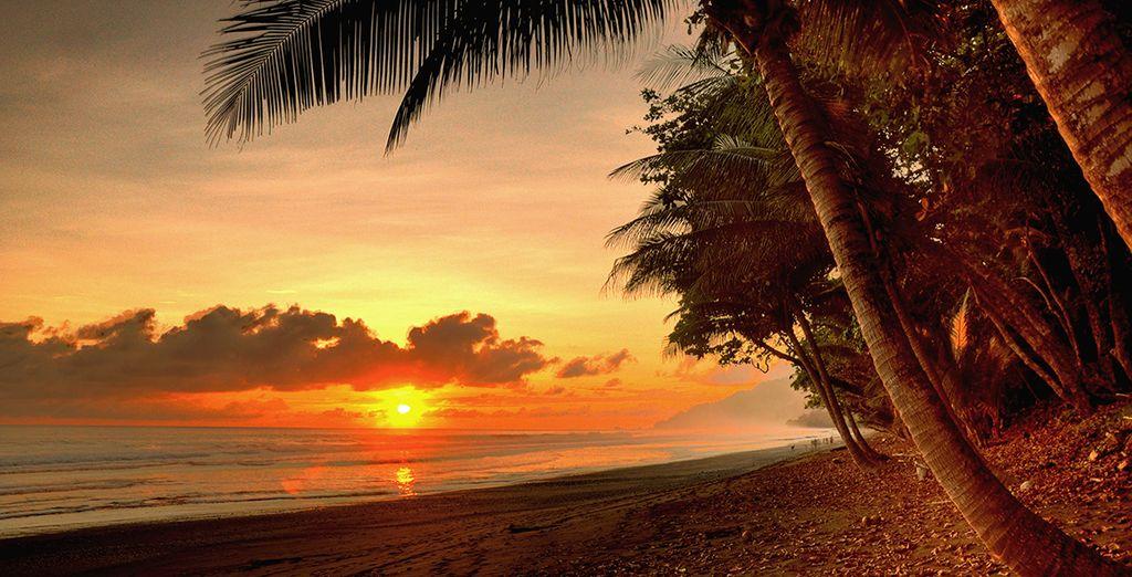 Mais aussi des plages paradisiaques...