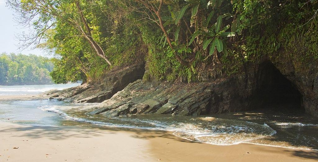 Lagunes, sentiers forestiers, ponts suspendus...