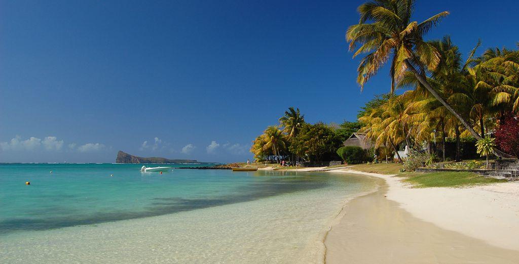 Faites une pause sur la plage