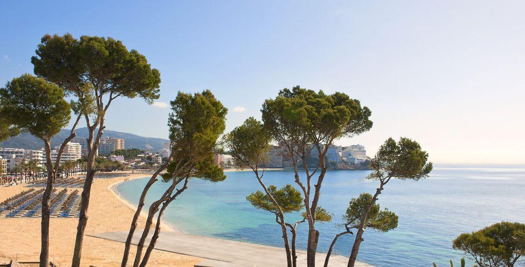 Face à la plage sur l'île de Majorque aux Baléares