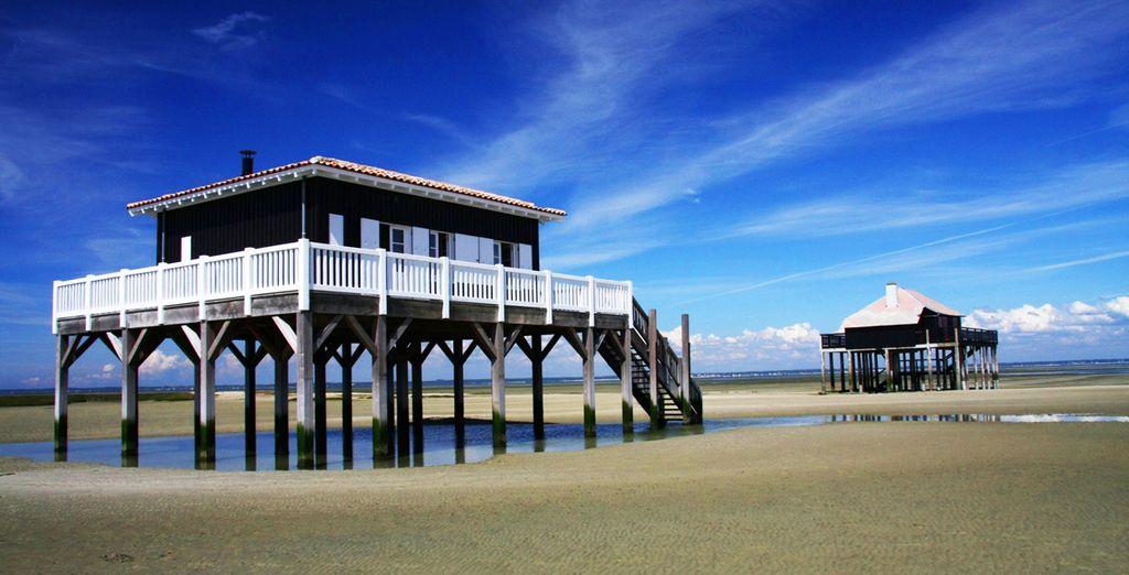 Et les immenses plages de sable doré de la côte Atlantique...