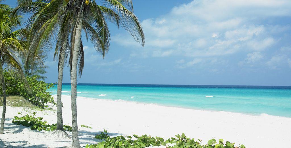 Profitez du calme des plages de sable blanc...
