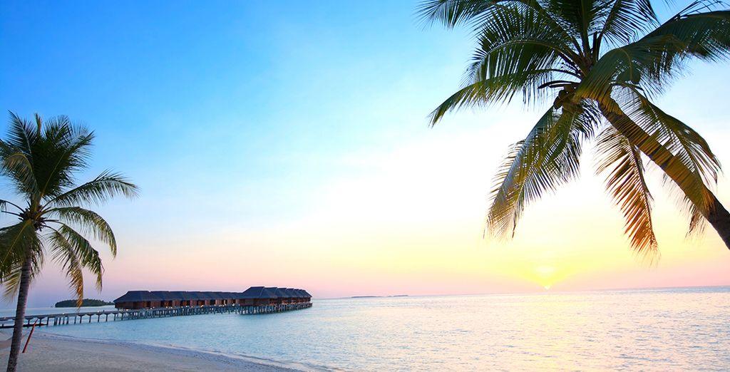 Avis lux maldives 5 voyage priv for Sejour complet maldives