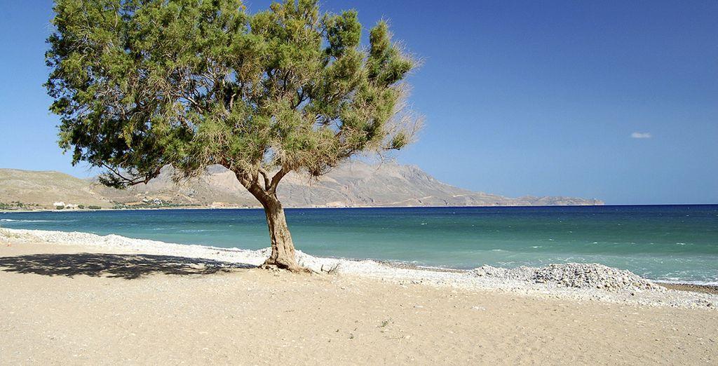 Laissez-vous séduire par les sublimes plages de sable fin...