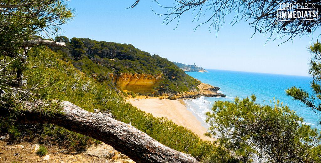 La Catalogne est une terre radieuse qui n'attend que vous...