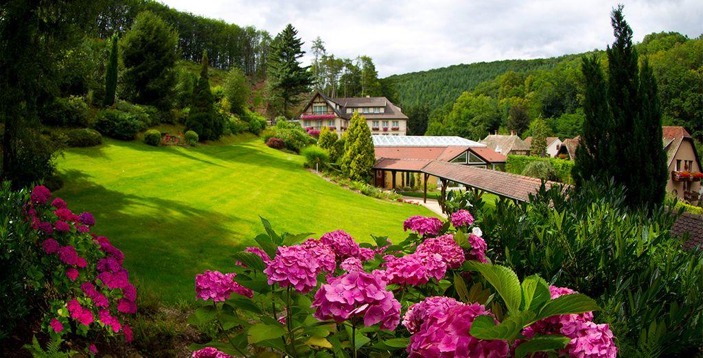 Parc fleuri en Alsace