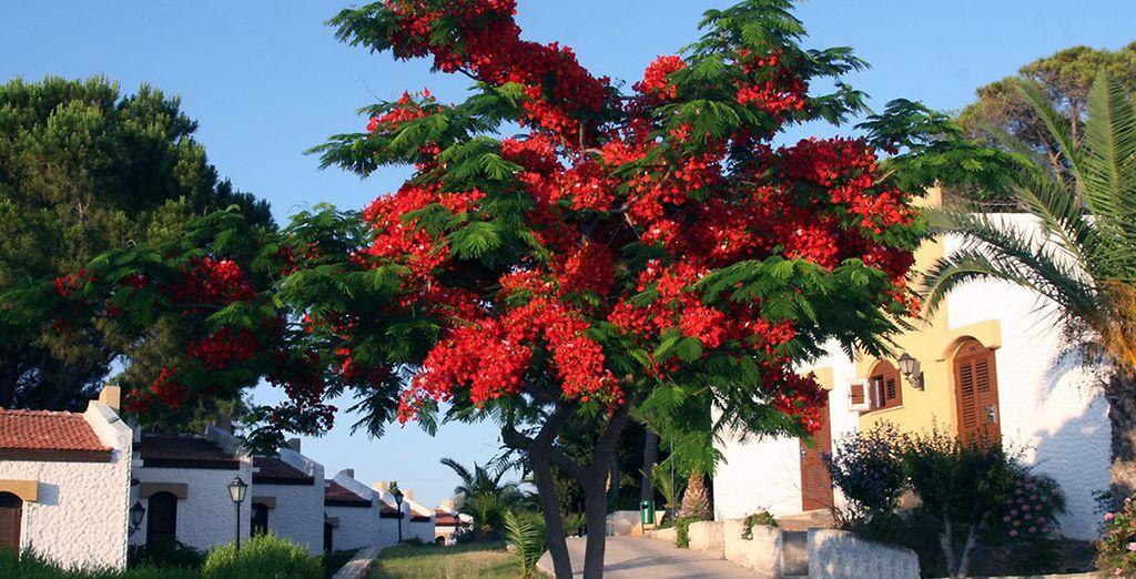 Au coeur d'un village authentique et fleuri