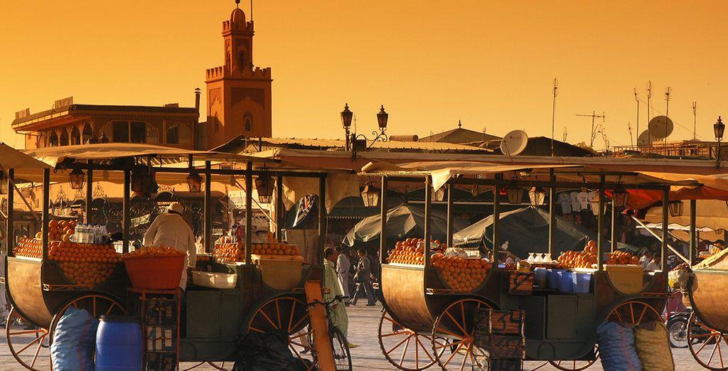 Tout commence à quelques kilomètres de Marrakech