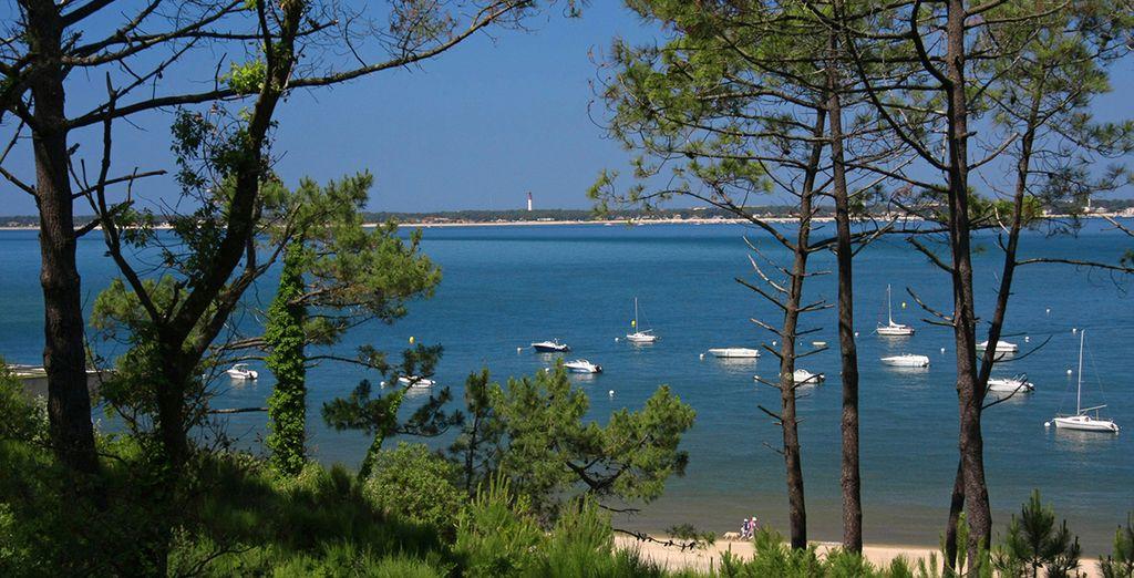 Excellent séjour en Gironde !