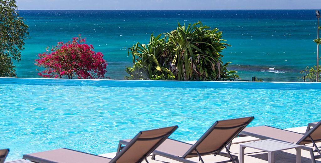 Bienvenue en Martinique !