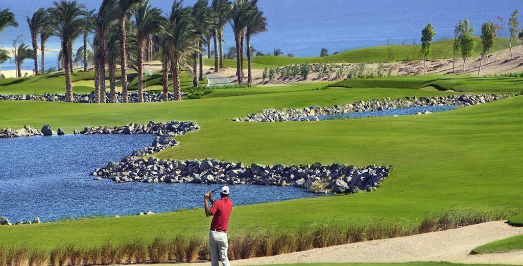 De nombreuses activitées s'offrent à vous comme le golf...