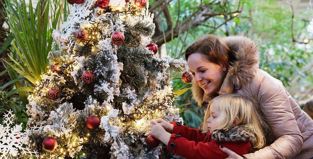 Célébrez Noël en famille dans un décor féerique