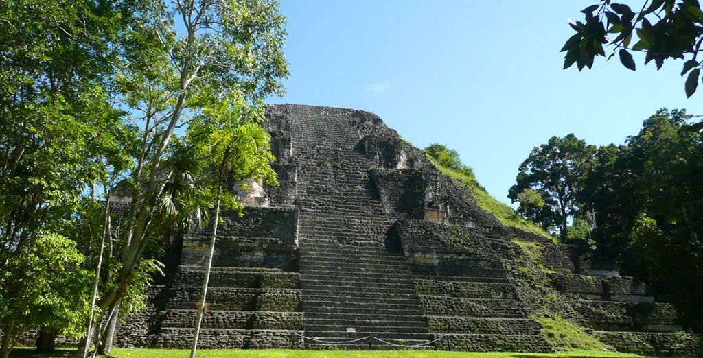 Découvrirez les immenses pyramides de Tikal
