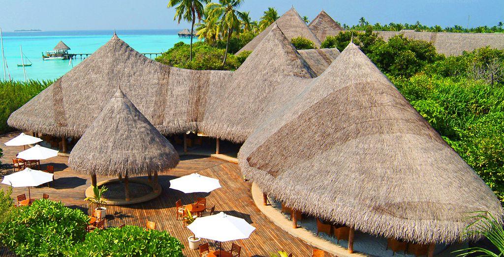 Dans ce superbe resort, véritable écrin de luxe