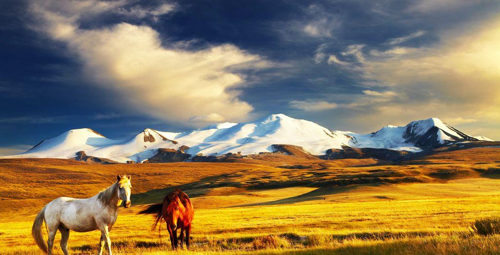 De la Mongolie
