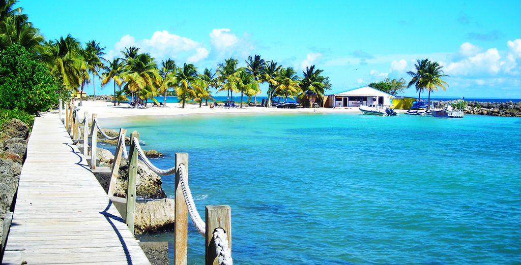 Venez découvrir la beauté de la Guadeloupe...