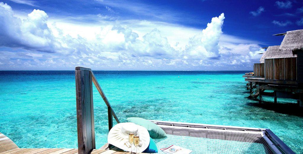 Envie de vous envoler pour le paradis ?