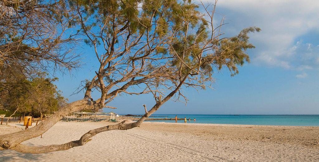 Accordez-vous une pause détente sur les mythiques plages du sud