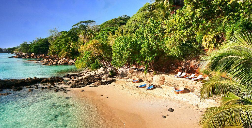 Vous attend au bord d'une plage privée