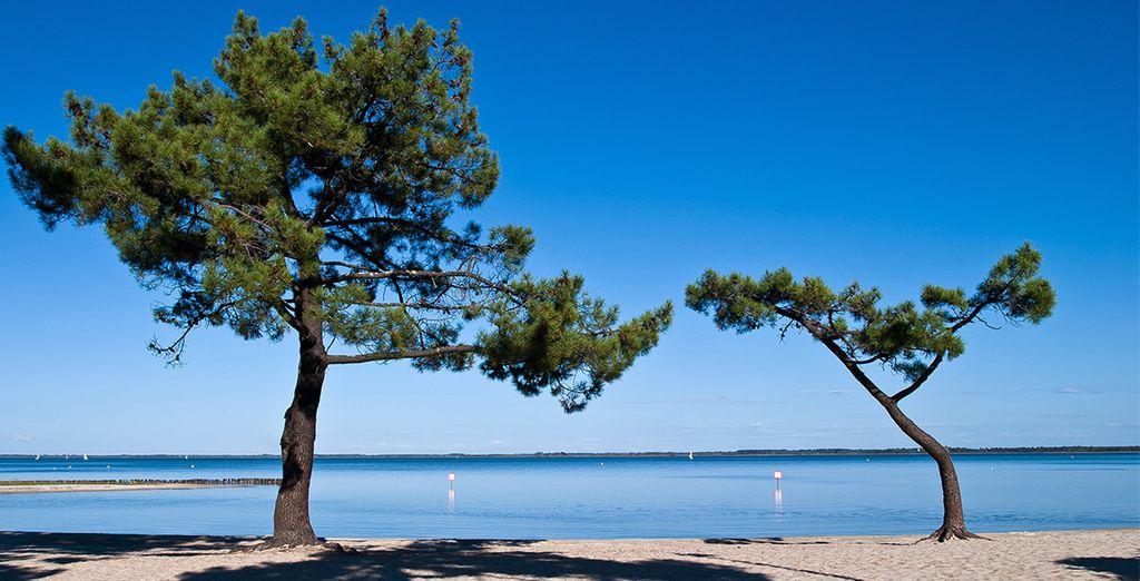 Bienvenue en Gironde