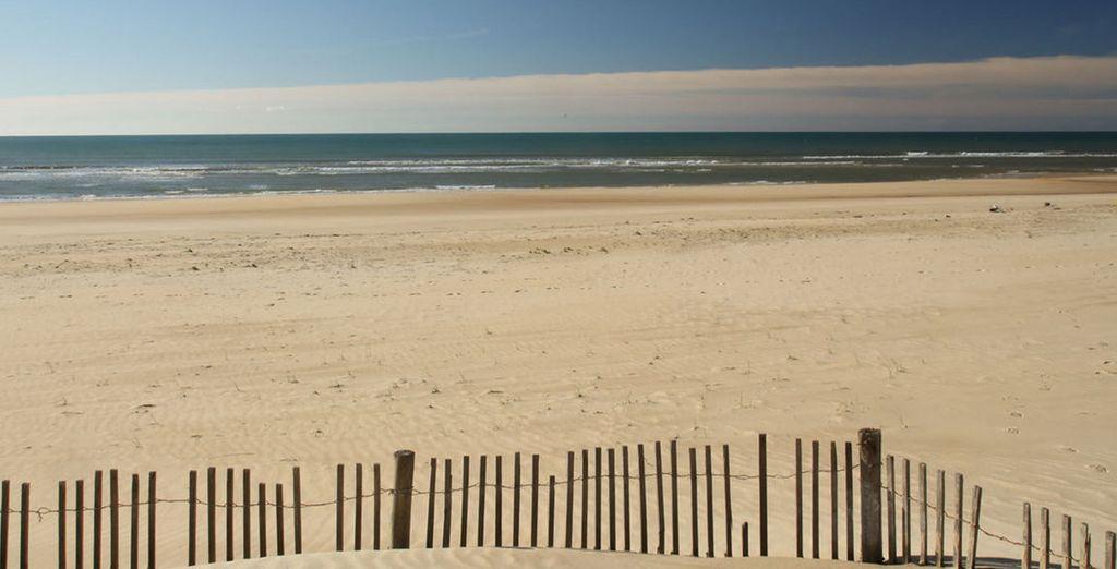 De flâner sur la plage située à 800 mètres