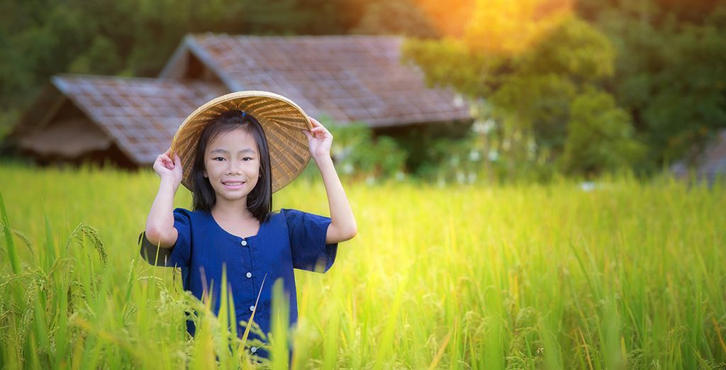 Une nature superbe et un peuple accueillant...  -  Circuit la Beauté du Cambodge et extension possible à Koh Samui Koh Samui