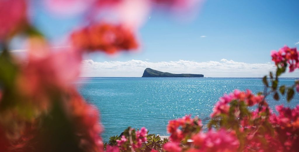 N'oubliez pas d'aller découvrir les trésors de l'île