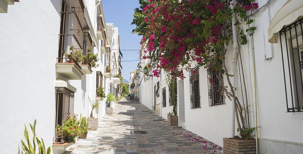 Comme la charmante ville de Marbella