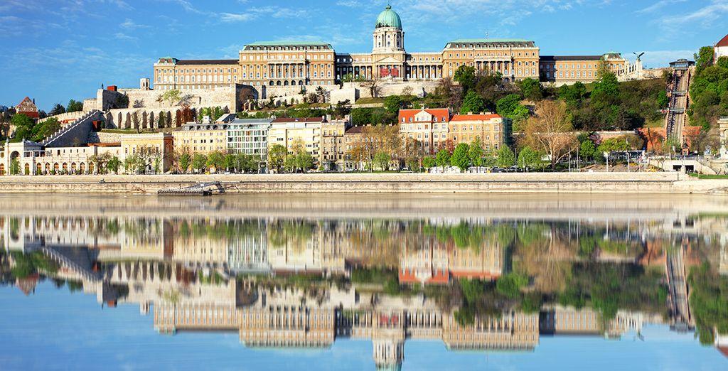 Comme le Palais Royal