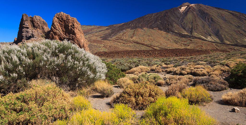 Rejoignez le pic du Teide pour d'inoubliables randonnées...