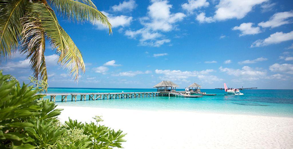 Dans le décor à couper le souffle du LUX* South Ari Atoll