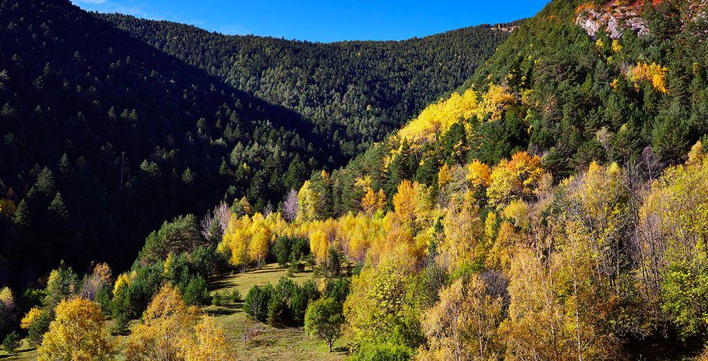 au coeur du Parc Naturel de Comapedrosa, situé en Andorre.