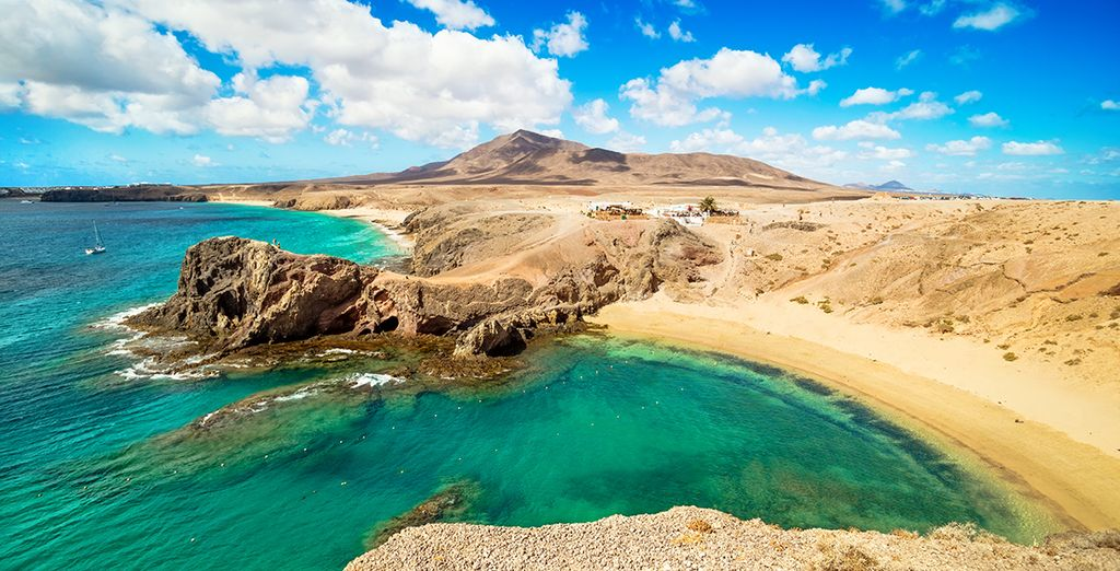Avis h tel occidental lanzarote playa 4 voyage priv for Designhotel lanzarote