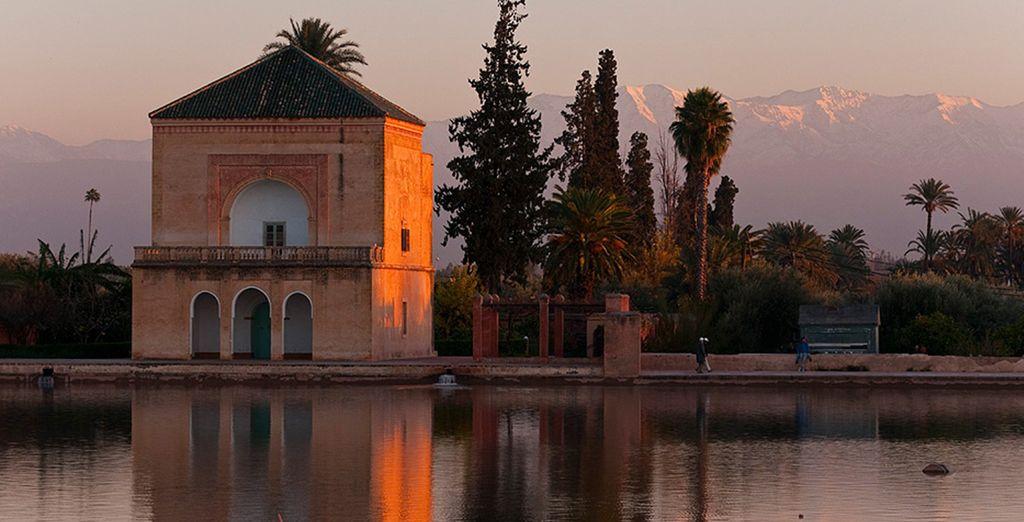 Toujours envoûté par la magie de Marrakech...