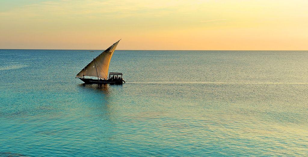 Laissez-vous émerveiller par les paysages enchanteurs de Zanzibar