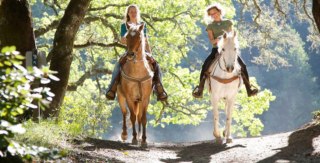 Partez à la découverte du Domaine à dos de cheval